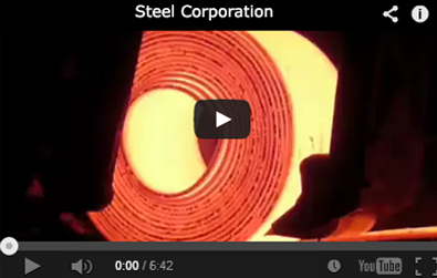 Speaking, advise exporter india spring steel strip